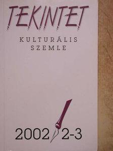 Bihari Sándor - Tekintet 2002/2-3 [antikvár]
