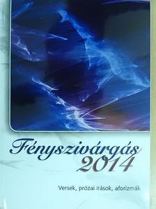Antal György - Fényszivárgás 2014 [antikvár]