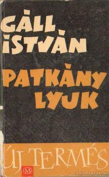 Gáll István - Patkánylyuk [antikvár]
