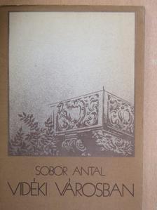 Sobor Antal - Vidéki városban [antikvár]