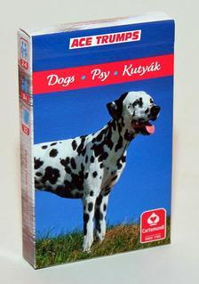 CartaCo kft - 4 az 1-ben / Kedvenceink a kutyák kártya