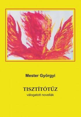 Mester Györgyi - Tisztítótűz [eKönyv: epub, mobi]