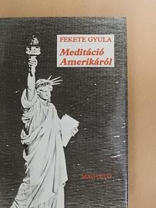 Fekete Gyula - Meditáció Amerikáról [antikvár]