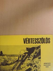 T. Dobosi Viola - Vértesszőlős [antikvár]