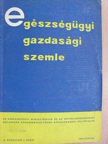Dr. Bogina Elemér - Egészségügyi Gazdasági Szemle 1964. június [antikvár]