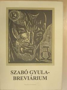 Dusza István - Szabó Gyula-breviárium [antikvár]