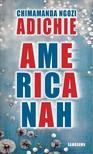 Chimamanda Ngozi Adichie - Americanah [eKönyv: epub, mobi]