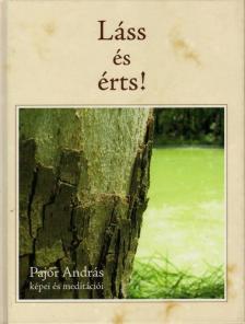 Pajor András - Láss és érts! Pajor András képei és meditációi