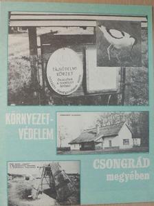 Bőle István - Környezetvédelem Csongrád megyében [antikvár]
