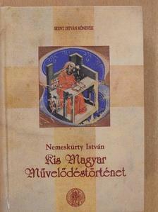 Nemeskürty István - Kis magyar művelődéstörténet [antikvár]