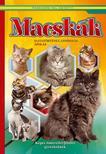 Macskák - Képes ismeretterjesztés gyerekeknek/Fedezzük fel együtt!