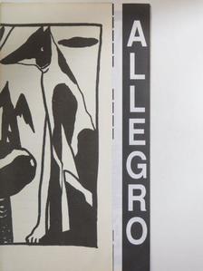 Buzinkay Péter - Allegro '93. október [antikvár]
