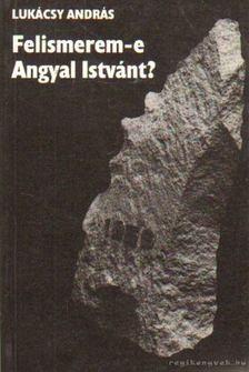LUKÁCSY ANDRÁS - Felismerem-e Angyal Istvánt? [antikvár]