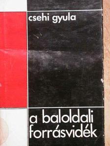 Csehi Gyula - A baloldali forrásvidék [antikvár]