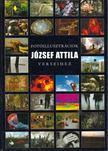 Györi Lajos - Fotóillusztrációk József Attila verseihez [antikvár]