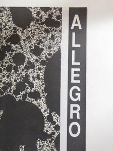 Adorján Péter - Allegro 1994/1. [antikvár]