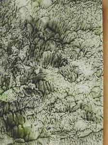 Szénási Miklós - Légmezők lovagja (dedikált, számozott példány) [antikvár]