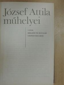 M. Pásztor József - József Attila műhelyei [antikvár]