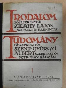 Aujeszky László - Irodalom-Tudomány 1. [antikvár]