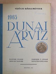 Bencsik Béla - Dunai árvíz 1965 [antikvár]