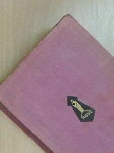 Alexandre Dumas - A varázsló [antikvár]