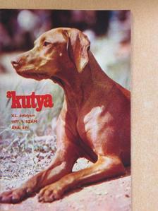 Bolgár Anna - A Kutya 1977/9. [antikvár]