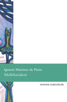 MARTÍNEZ DE PISÓN, IGNACIO - Mellékutakon