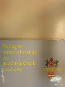 Bernát Tivadar - Budapest társadalmának és gazdaságának száz éve [antikvár]