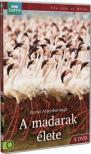 MADARAK ÉLETE 3. BBC - DVD -