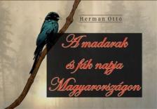 HERMAN OTTÓ - Madarak és fák napja Magyarországon