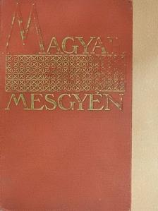 Aszlányi Károly - Szilveszter [antikvár]