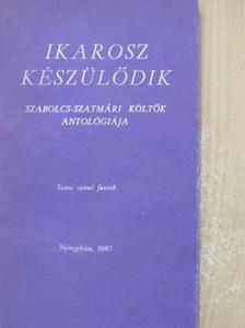 Antal Attila - Ikarosz készülődik [antikvár]