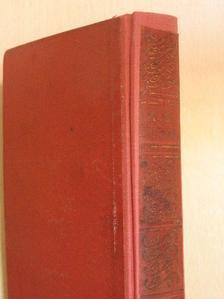 Alexandre Dumas - Király a vérpadon I-II. [antikvár]