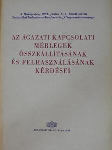 Augustinovics Mária - Az ágazati kapcsolati mérlegek összeállításának és felhasználásának kérdései [antikvár]