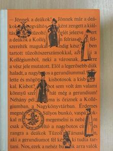 Ábel Olga - Ezerszínű Magyarország [antikvár]