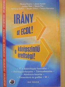 Devecz Ferenc - Irány az ECDL!/a középszintű érettségi! [antikvár]