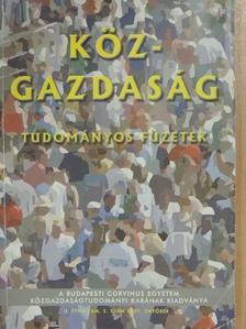Bélyácz Iván - Köz-gazdaság 2007. október [antikvár]
