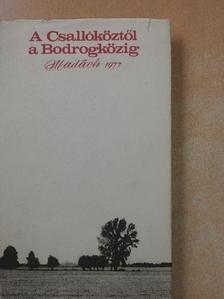 Bábi Tibor - A Csallóköztől a Bodrogközig [antikvár]