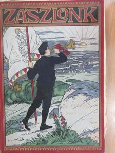 Danczer Béla - Zászlónk 1908. szeptember-1909. június [antikvár]