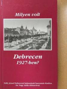 Dr. Ecsedi István - Milyen volt Debrecen 1927-ben? [antikvár]