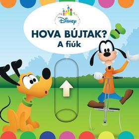 Hova bújtak a fiúk? - Disney Baby térbeli könyv