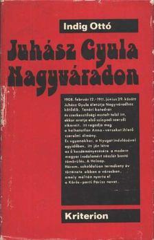 Indig Ottó - Juhász Gyula Nagyváradon (1908-1911) [antikvár]
