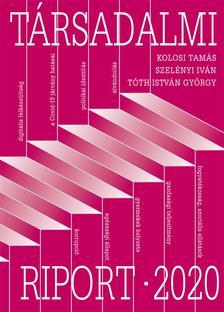 Tóth István György - Társadalmi Riport 2020