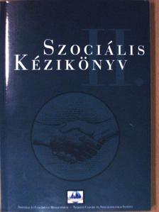 Demus Iván - Szociális kézikönyv II. [antikvár]