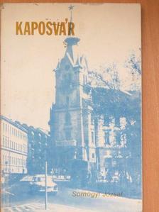 Somogyi József - Kaposvár [antikvár]