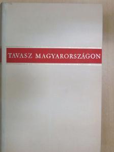 Áprily Lajos - Tavasz Magyarországon/A megnőtt élet [antikvár]
