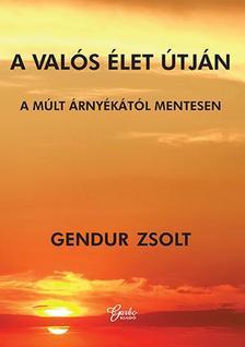 Gendur Zsolt - A valós élet útján