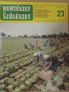 Dr. Balázs Klára - Kertészet és Szőlészet 1979. június 7. [antikvár]