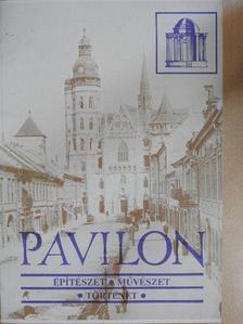 Ana Lujsa Worseck de Kálnay - Pavilon 1990/2-3. [antikvár]
