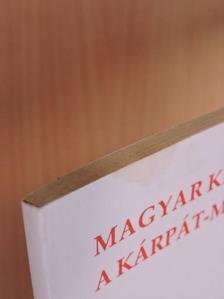 Bába Iván - Magyar kisebbségek a Kárpát-medencében [antikvár]